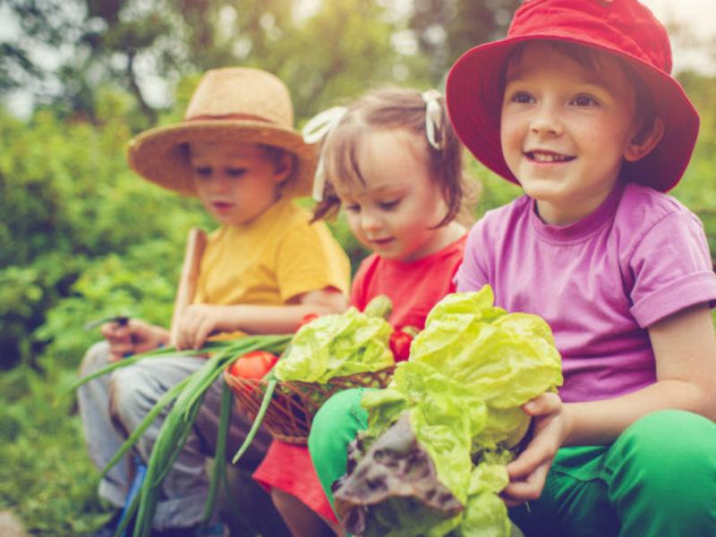 تغذیه و تقویت حافظه کودکان
