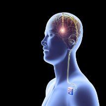 ضعف حافظه تقویت حافظه