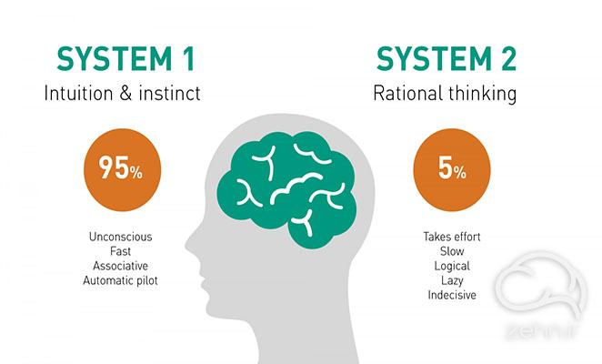 دو سیستم مغز در خلاصه کتاب تفکر سریع و کند
