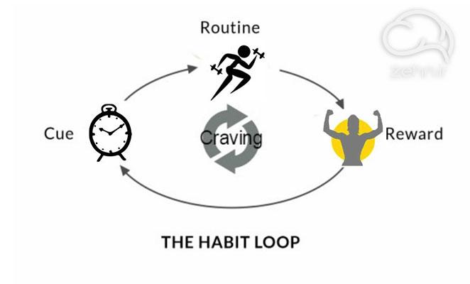 چرخه عادت در خلاصه کتاب قدرت عادت