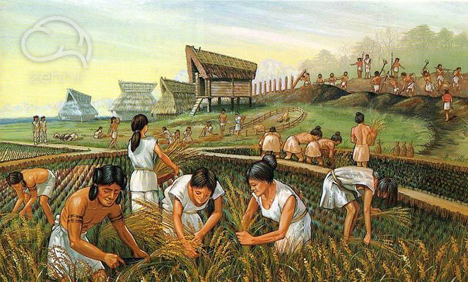 انقلاب کشاورزی در خلاصه کتاب انسان خردمند