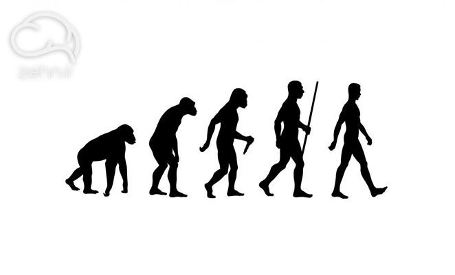 تکامل انسان در خلاصه کتاب انسان خردمند