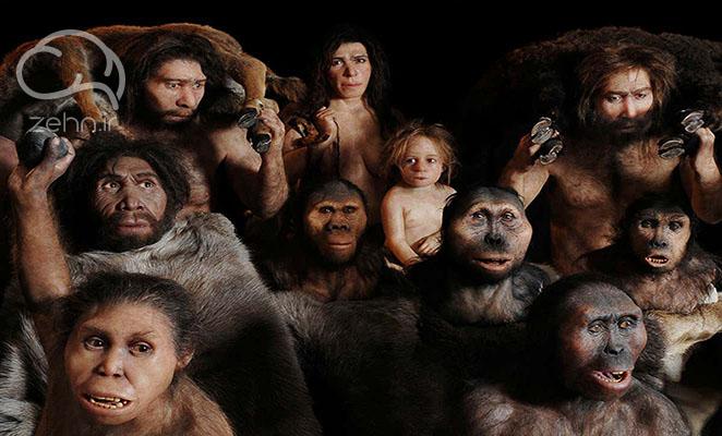 گونه های انسانی در خلاصه کتاب انسان خردمند